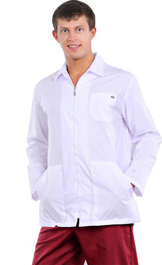 Блуза мужская Профи разноцветная